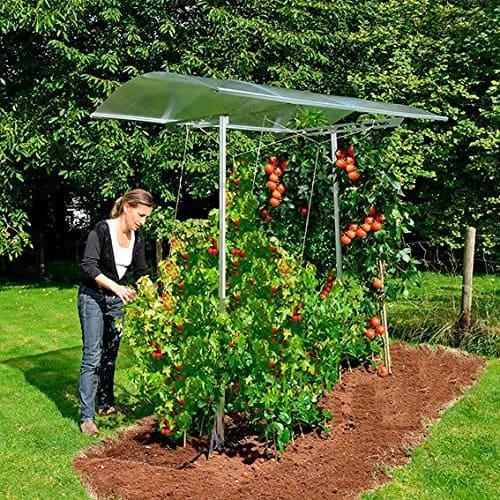 Gärtner Pötschke Tomatendach Tommy inkl. Rahmen und Bodenanker, verlängerbar